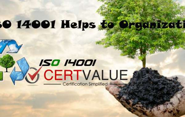 What are the Structures of ISO 14001 Certification in Kuwait?