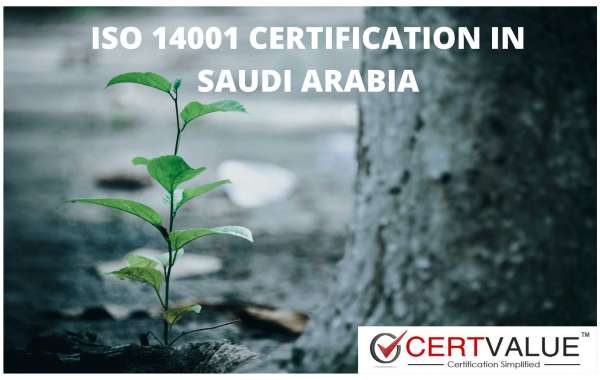 Disadvantages of ISO 14001 in Saudi Arabia, and how to overcome them?