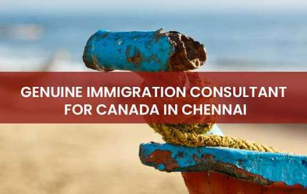 Things to take care Before selecting an Immigration practice