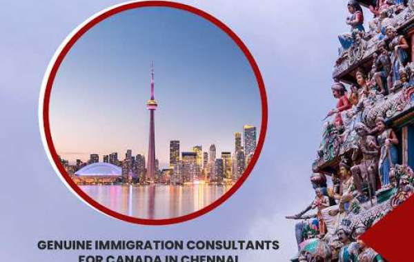 The Most Reliable Canada Immigration Consultants in Chennai– Novus Immigration Chennai