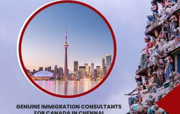 Charting Your Course to Permanent Residency with Novus-Canadian Immigration