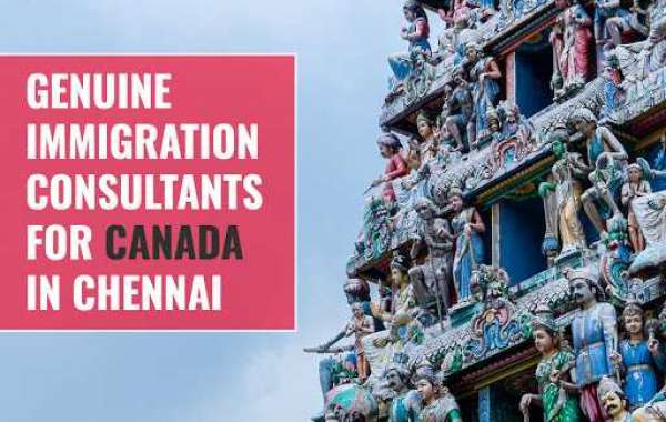 How to Get Ready for Canadian Immigration in 2021?